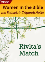 Rivka's Match Made in Heaven
